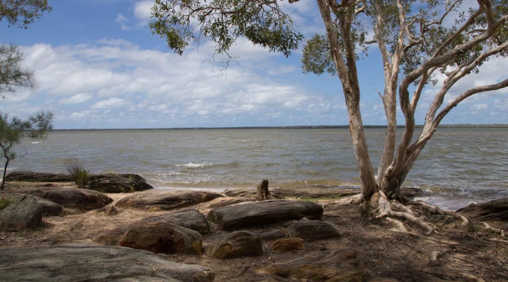 Boreen Point, Lake Cootharaba, north of Noosa Heads